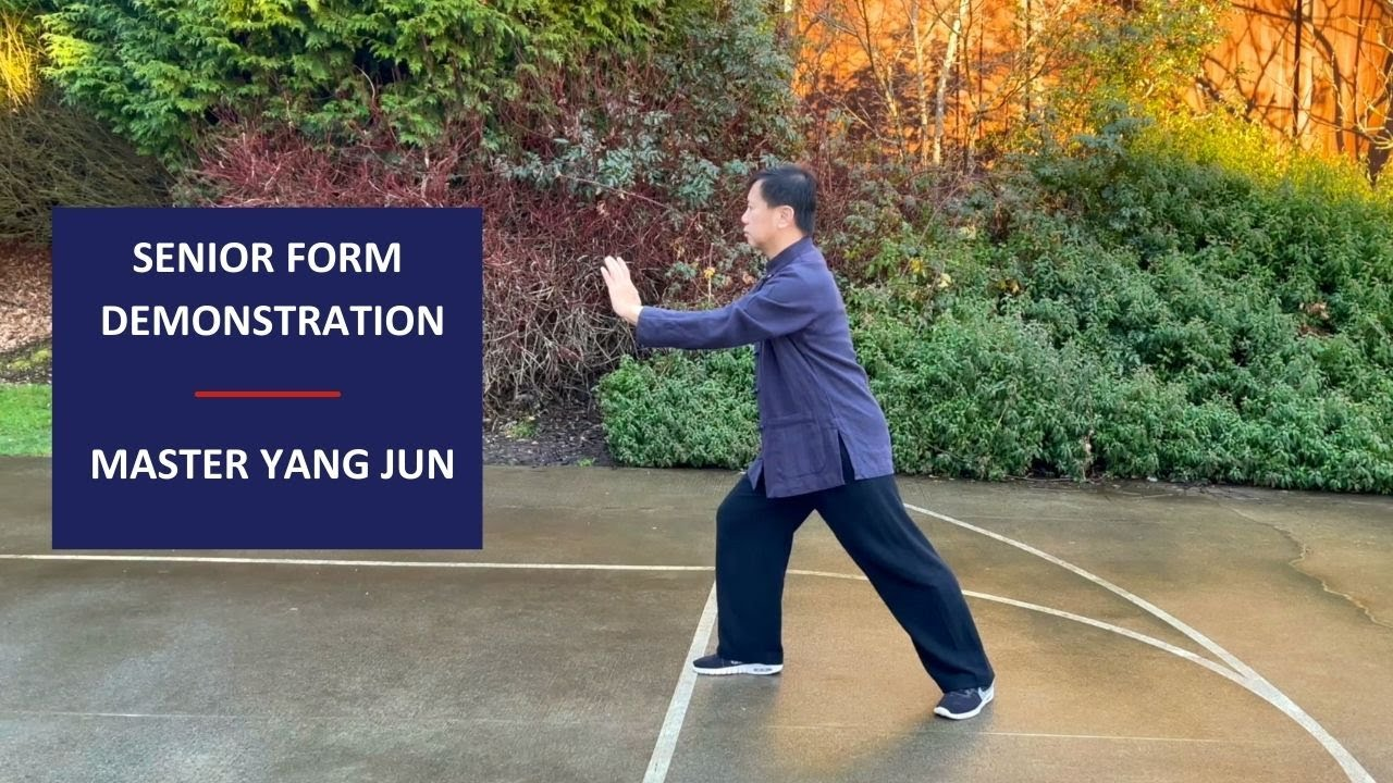 Master Yang Jun / Senior Form Demonstration