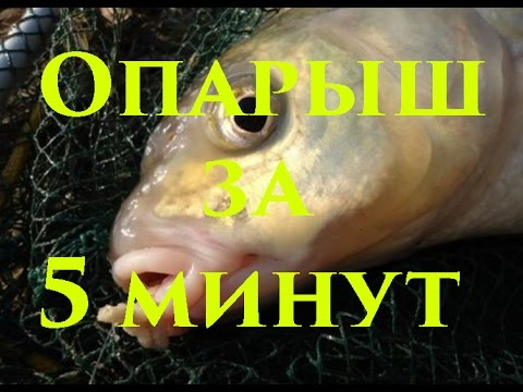 перловка для рыбалки на карася