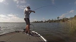 Bass Fishing Lake Hamilton Fl Nov 14, 2018