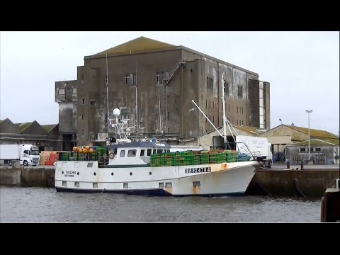 Roseland ; Bateau ; Bayonne ; Fileyeur ; Port de pêche ; Lorient ; France