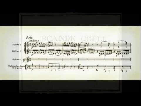 "Mozart : offertorio ""Scande coeli limina"" KV34"