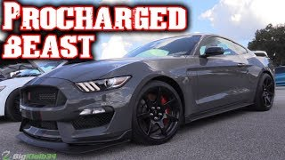 ProCharged Shelby GT350 is Downright Wicked!