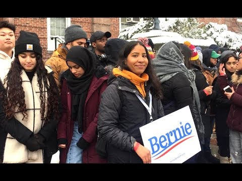 Among The Brooklyn Bernie Bros