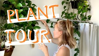 64 Plants in a 1 Bedroom Apartment