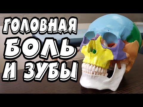 Насморк болит голова и зубы