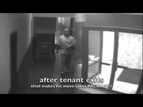 Package Thief Jersey City, NJ