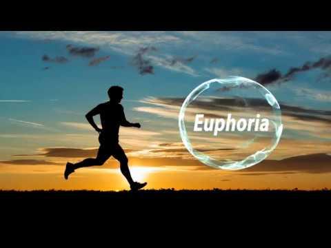 tsvitko---euphoria