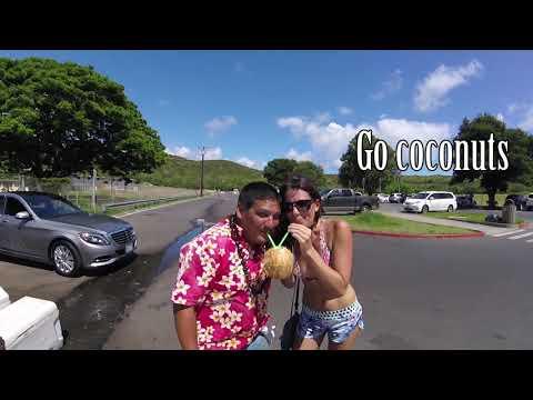 WOW Air Travel Guide Application - Oahu, Hawaii