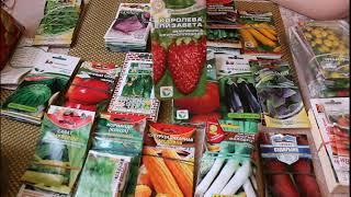 Обзор семян (овощей и зелени)