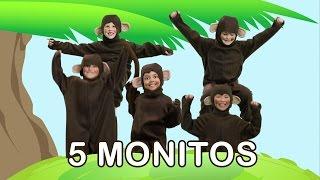 Cinco Monitos