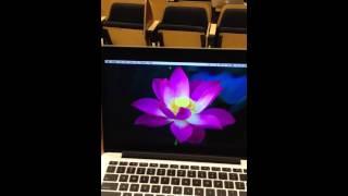 Gefen VGA to DVI scaler pro Mac issue.