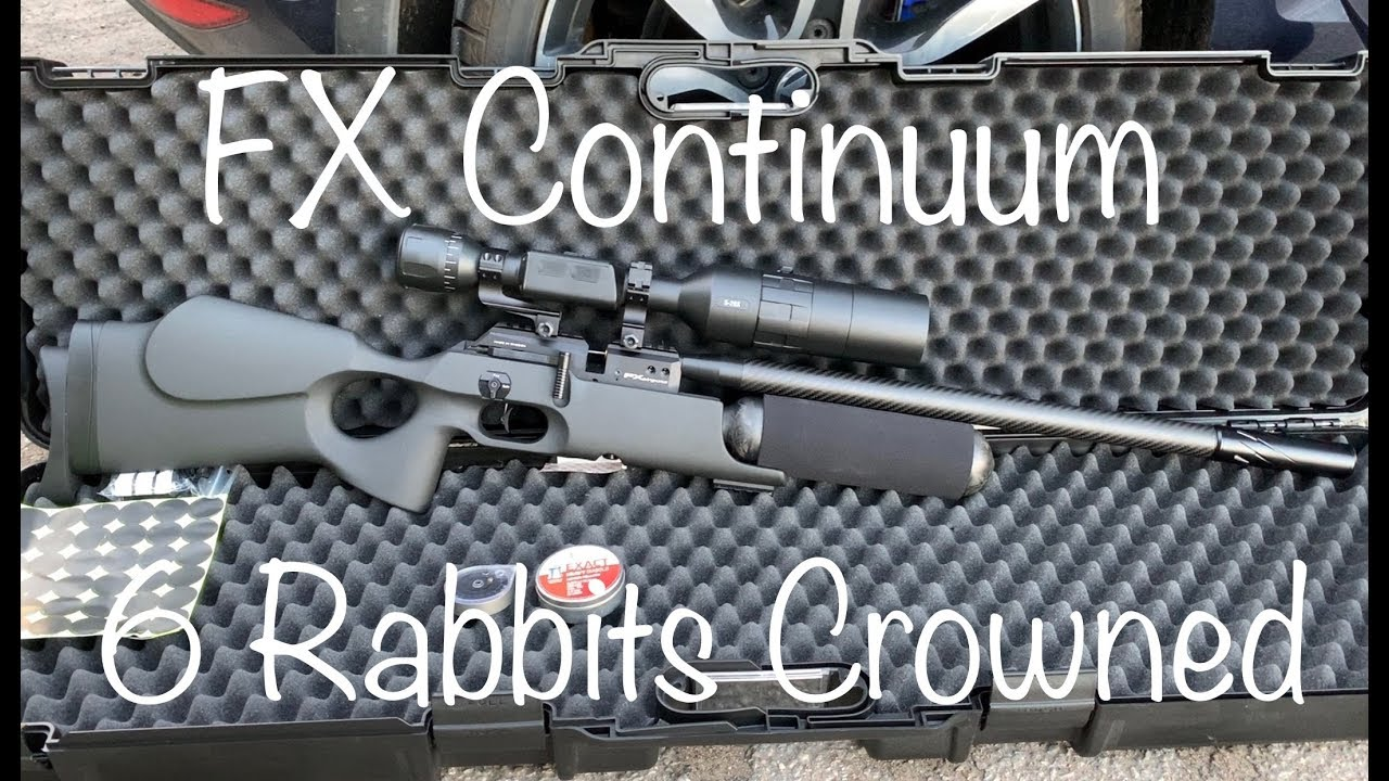 "#18 FX Continuum - 6 Bunnies ""Crowned"""