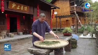 GLOBALink | Eagle tea reinvigorates Tujia villages in China's Chongqing