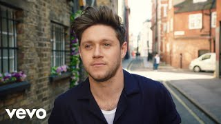 Download lagu Niall Horan Nice To Meet Ya