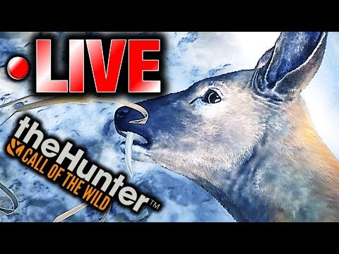 Hunting Medved-Taiga LIVE | theHunter Call of the Wild