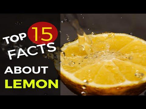 Top 15 Surprising Facts About LEMON