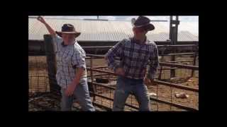 Watch me (whip/nae nae) country parody