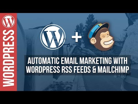 Automatically send emails from your WordPress Website with Mailchimp - 동영상