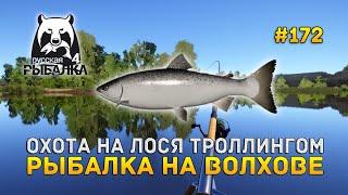 Охота на Лося троллингом. Рыбалка на Волхове - Русская Рыбалка 4 #172