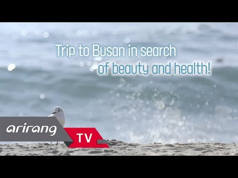 [FIT in your tour] Ep.3 - Trip to Busan in search of beauty and health! _ Full Episode