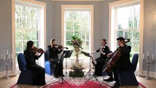 Potter Waltz - Patrick Doyle (Harry Potter and The Goblet of Fire) Wedding String Quartet - 4K