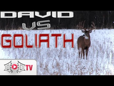 DAVID VS GOLIATH: Largest Wild Buck EVER Caught On Camera