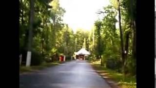 путь к могиле Ви́ктор Ро́бертович Цой (21 июня 1962, Ленинград — 15 августа 1990