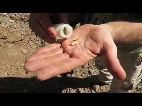 Arizona Gold Prospecting, Drywashing, Metal Detecting Part 2