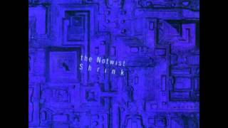 the Notwist - Electric Bear