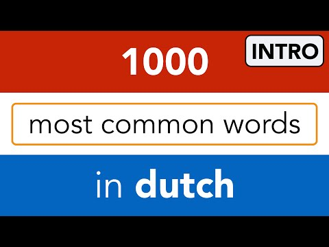 Dutch Course | Learn Dutch words online for free !