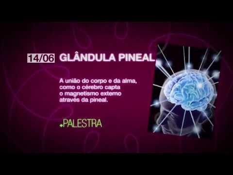 Glândula Pineal – A união do corpo e da alma. Dr Sérgio Felipe de Oliveira