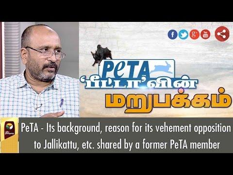 PETA: Main Background, Reason's for Jallikattu Ban   Exclusive Puthiya Thalaimurai  TV