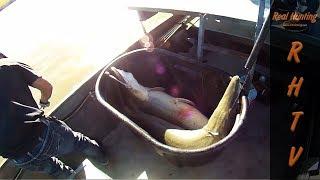 Bowfishing Texas Alligator Gar