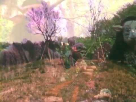 "Kikagaku Moyo/幾何学模様 ""Kodama"" Official Music Video"