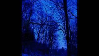 "Sami Luttinen sings ""Jo joutuu ilta"" by Jean Sibelius"