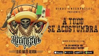 Kinto Sol - A Todo Se Acostumbra [Audio]