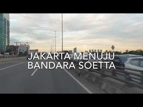 grebek-peternakan-ayam-bangkok-import-di-kota-metro-lampung-indonesia