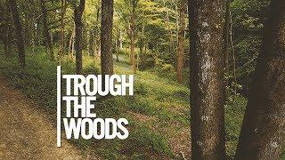Through the woods   Hamstreet Kent