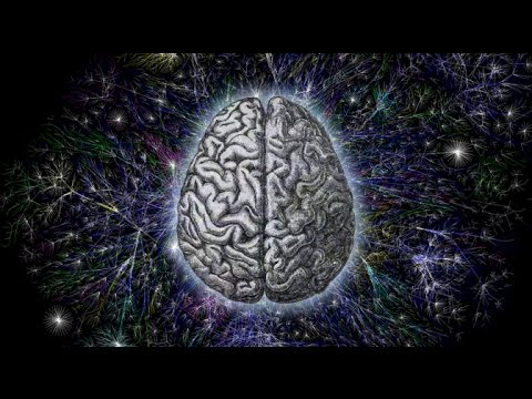 Quantum Mechanics and the Brain -  How They Work Together (Full Documentary)