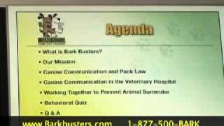 Colin Glass - Bark Busters Home Dog Training Southwest Florida