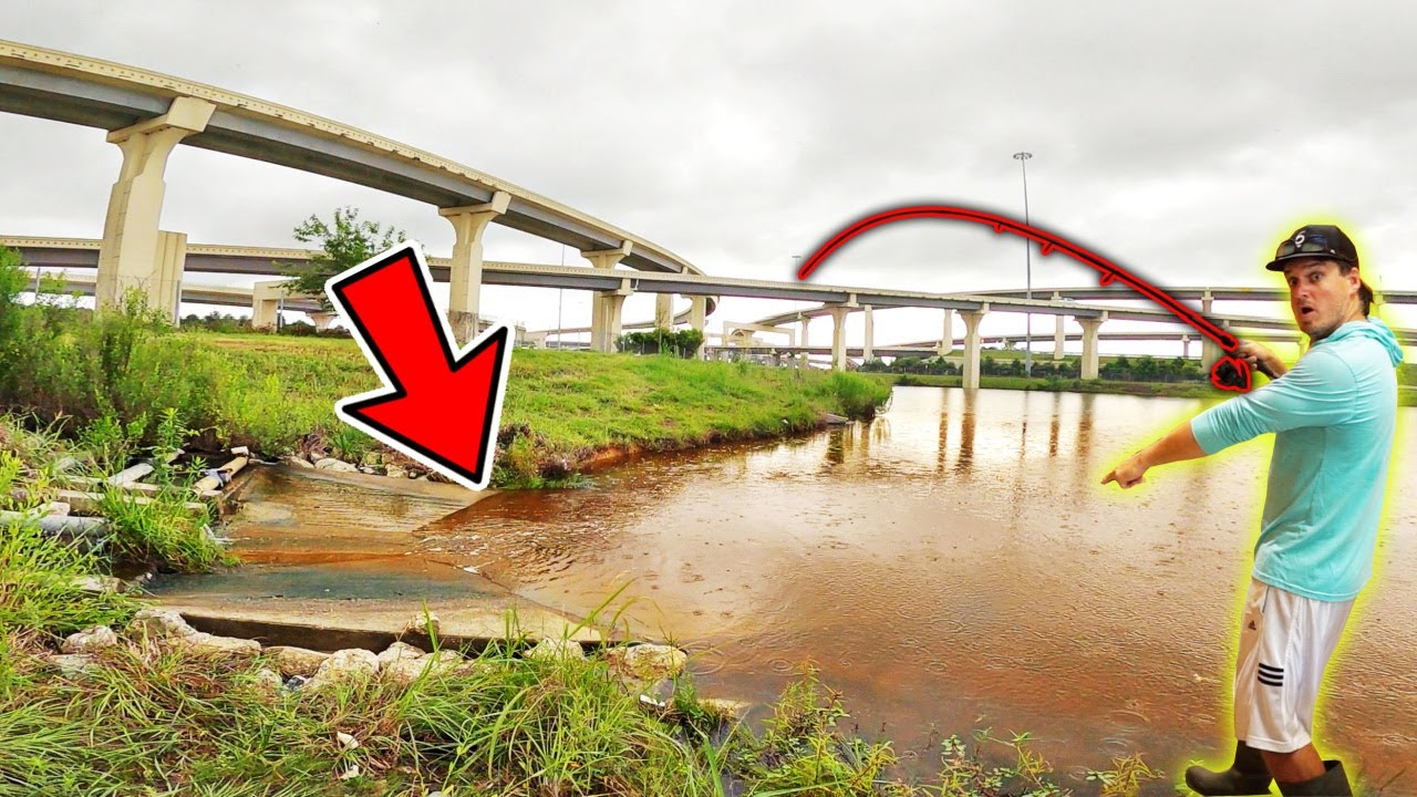 I Found BIG Fish TRAPPED in this Interstate Spillway!!