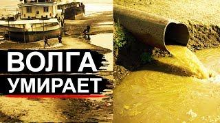 Волга на грани! Обмеление и грязь