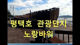 499탄 (200918)  경기도 평택호 관광단지 노랑…