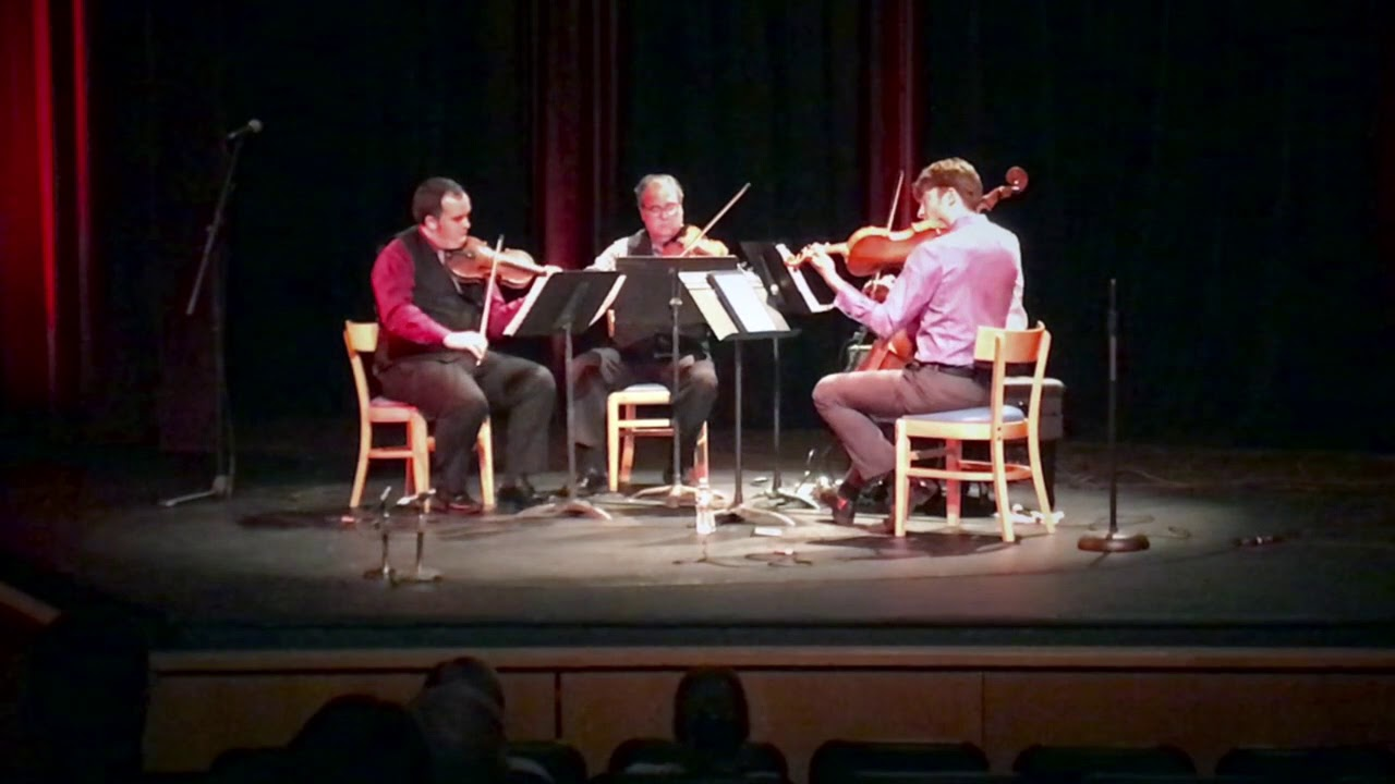 Turtle Island String Quartet -