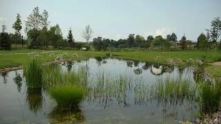 видео Строительство искусственных водоемов