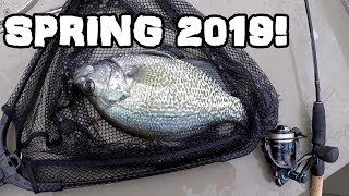 Spring Crappie Fishing 2019! Fishing Treetops For SLABS!