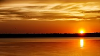 Download 8 Hour Sleep Music, Calm Music for Sleeping, Delta Waves, Insomnia, Relaxing Music, ☯406 Mp3 and Videos
