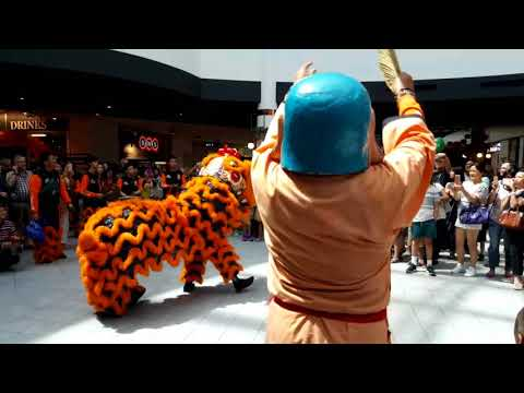 2018 Chinese New Year Lion Dance Melbourne Australia