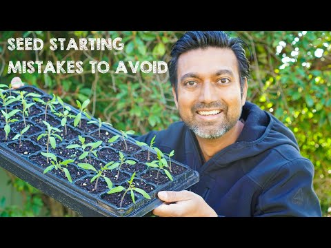 AVOID These 5 Seed Starting Mistakes