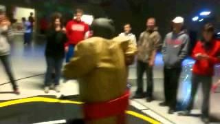 Sumo Wrestling For Rent  Grad Partis And Colleges Michigan